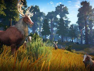 BDO охота олень