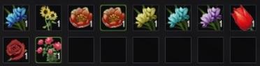 Коллекция из цветов