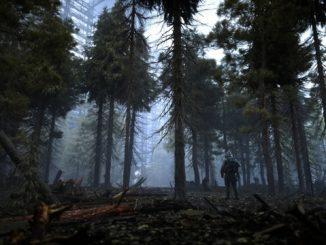 STALKER 2 лес